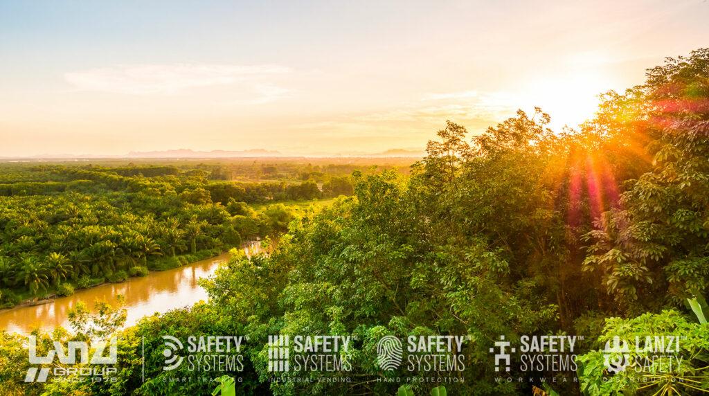 LANZI Green l green management e la green economy
